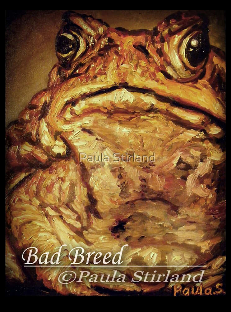 Bad Breed by Paula Stirland