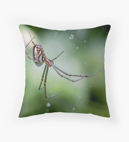 Spiders have jewels on their legs Throw Pillow
