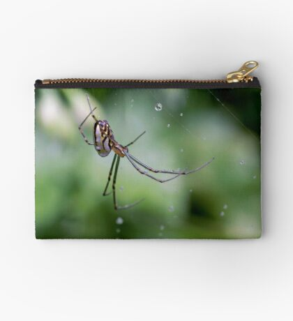 Spiders have jewels on their legs Studio Pouch