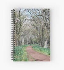 Wandering Path Spiral Notebook