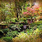 Arboretum by ScenicViewPics