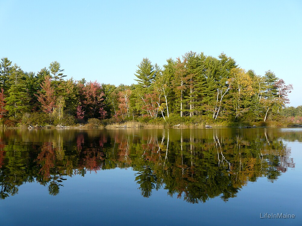 Fall Reflections by LifeInMaine