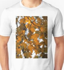 Under the canopy T-Shirt