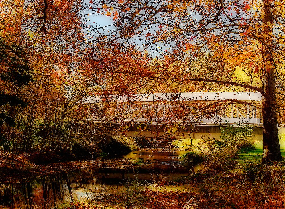 Bowser's Covered Bridge by Lois  Bryan
