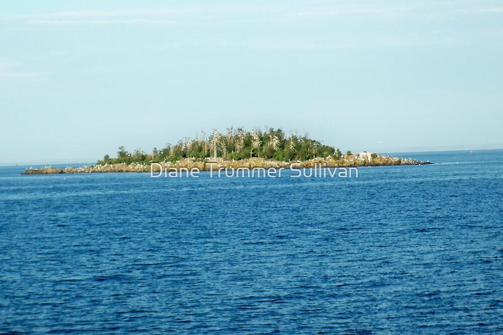Island on Lake Superior by Diane Trummer Sullivan