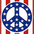 American Flag Peace Sign Vintage  by hilda74