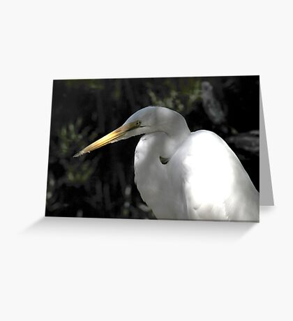 Great Snowy  Greeting Card