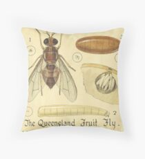 The Queensland Fruit Fly-The Mediterranean Fruit Fly Throw Pillow