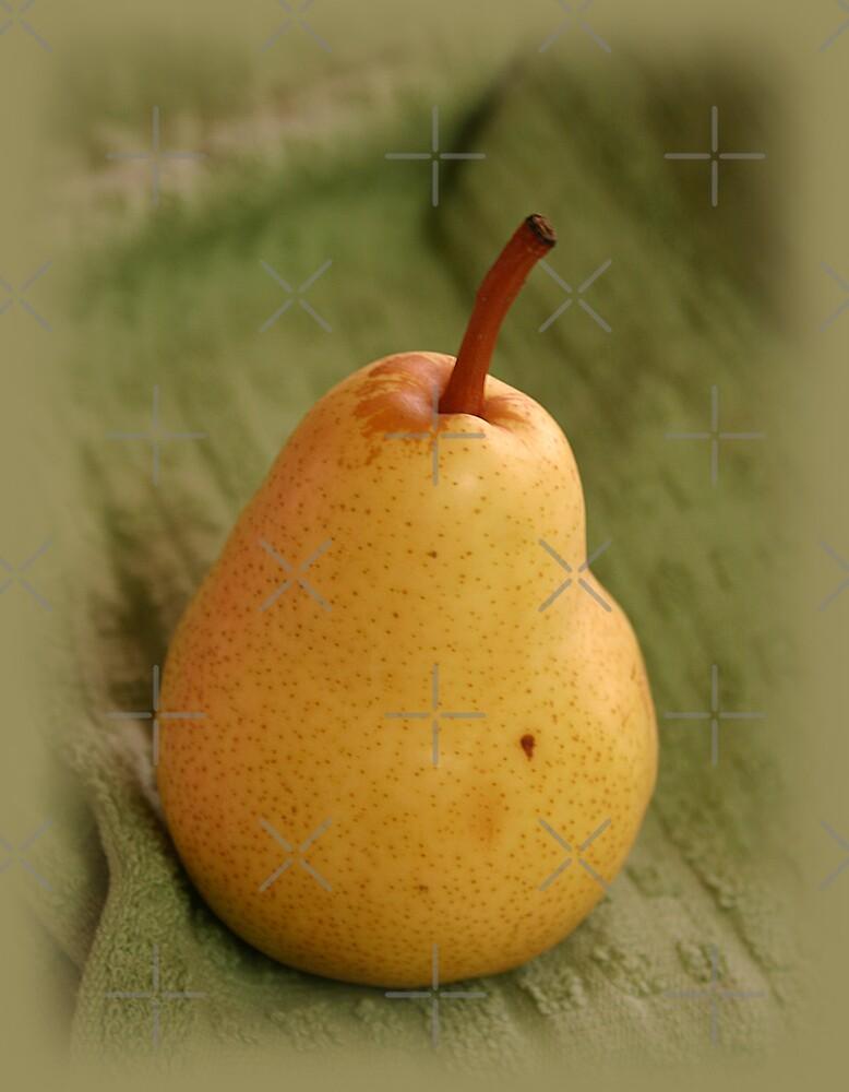 The Pear by CarolM