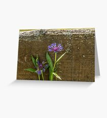 flower nearFlower by the wooden fence Greeting Card
