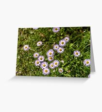 Flowers  in the spring Greeting Card