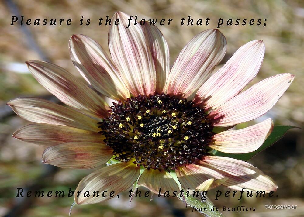Flower's Perfume by tkrosevear