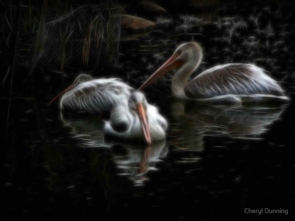 pelicans by Cheryl Dunning