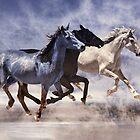 restless horses by carol brandt