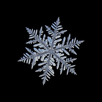 Real snowflake - Silverware black by chaoticmind75