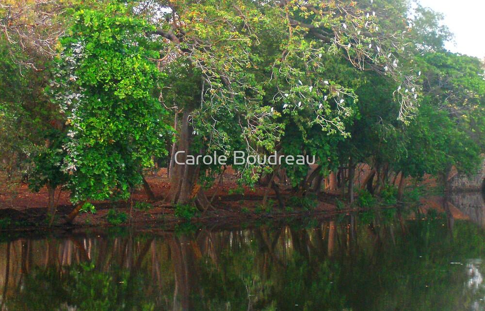 El Salvador #11 by Carole Boudreau