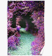 Purple Fantasy Woodland Forest Path Poster