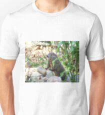 Has Anyone Seen My Shadow T-Shirt