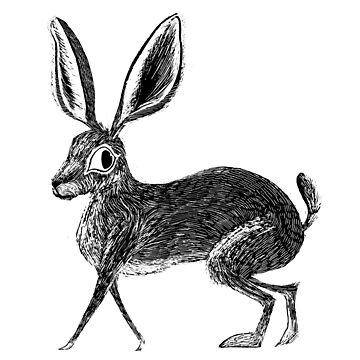 Scratchboard Rabbit by aktigerlily