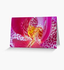 Orchid 3... Greeting Card