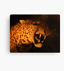Sabre Toothed Tiger Canvas Print