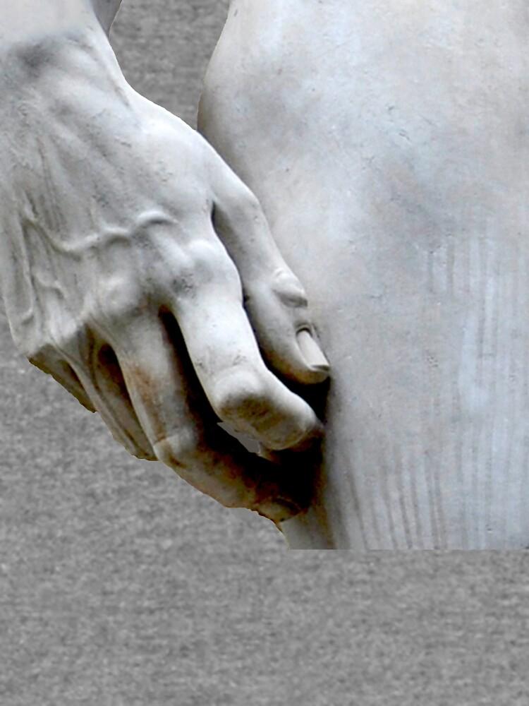 DAVID'S HAND MICHELANGELO DI LODOVICO BUONARROTI SIMONI by tomb42