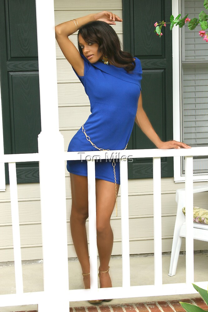 essay devil in a blue dress
