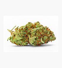 Space Queen Marijuana Photographic Print