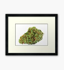 Space Queen Marijuana Framed Print