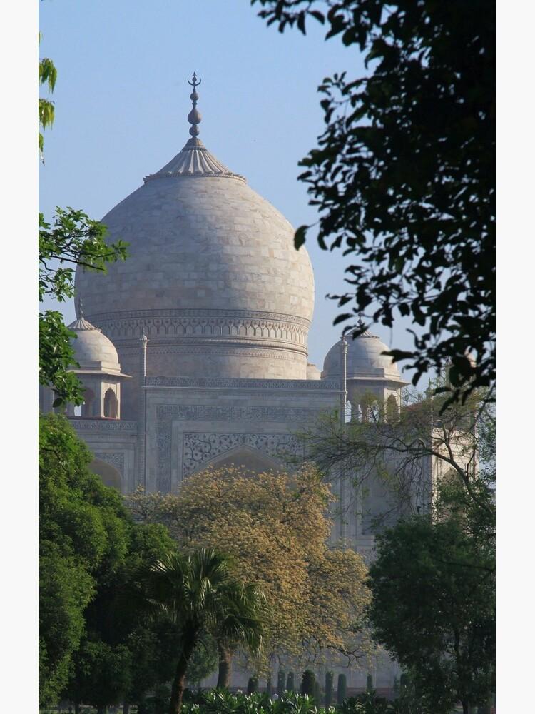 The Taj amongst the trees. by JohnDalkin