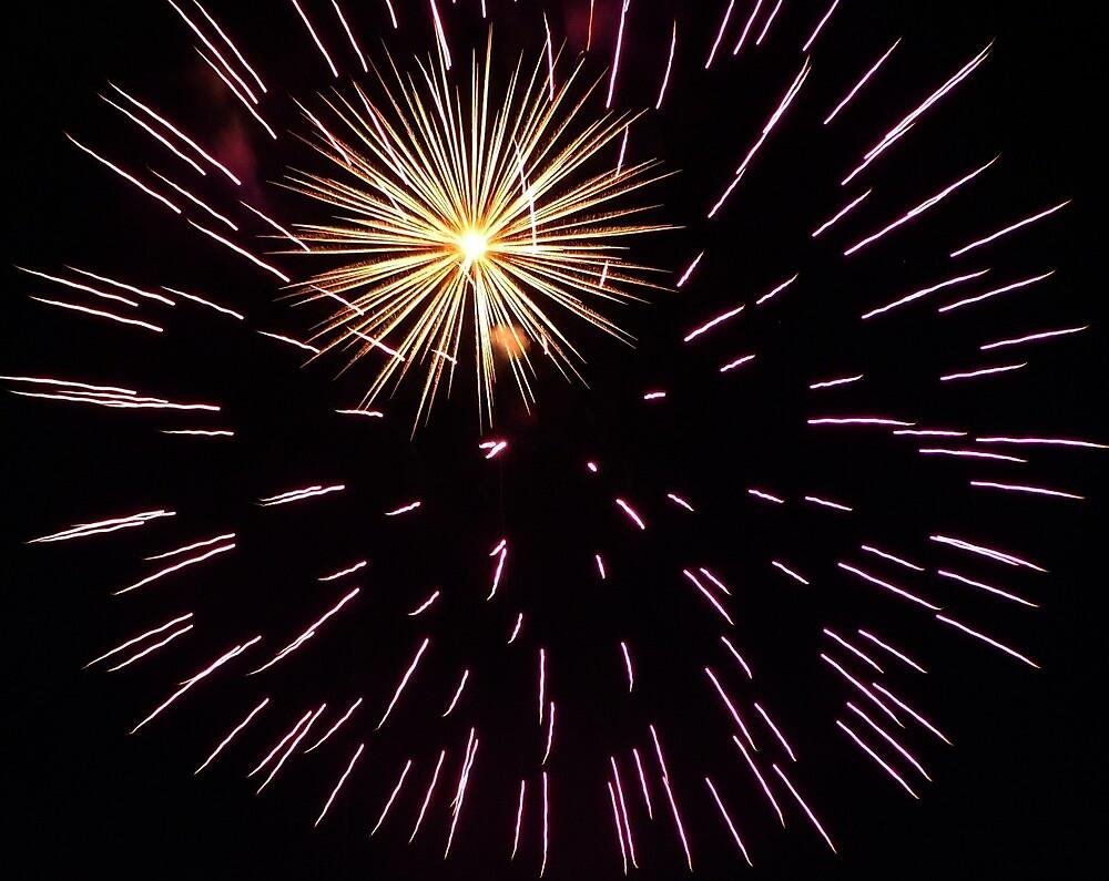 Fireworks 7 by Karl Rose