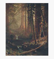Giant Redwood Trees of California by Albert Bierstadt Photographic Print