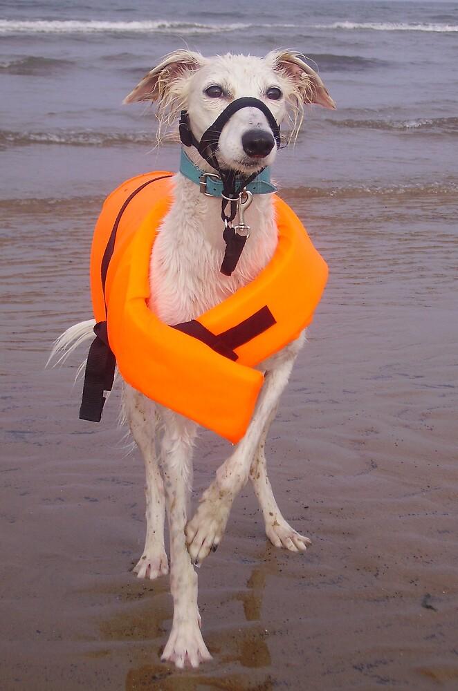 Safe swim! by j442000