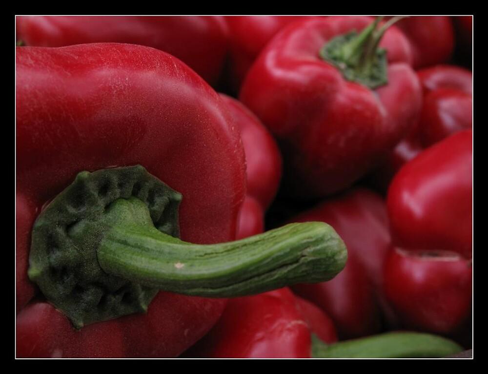 dusty sweet red pepper  by chen cohen