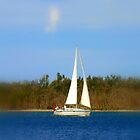 We are Sailing  by cjcphotography