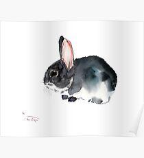 Hase, Kinderzimmer Kunst Poster