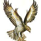 Falcon by Kate Eller