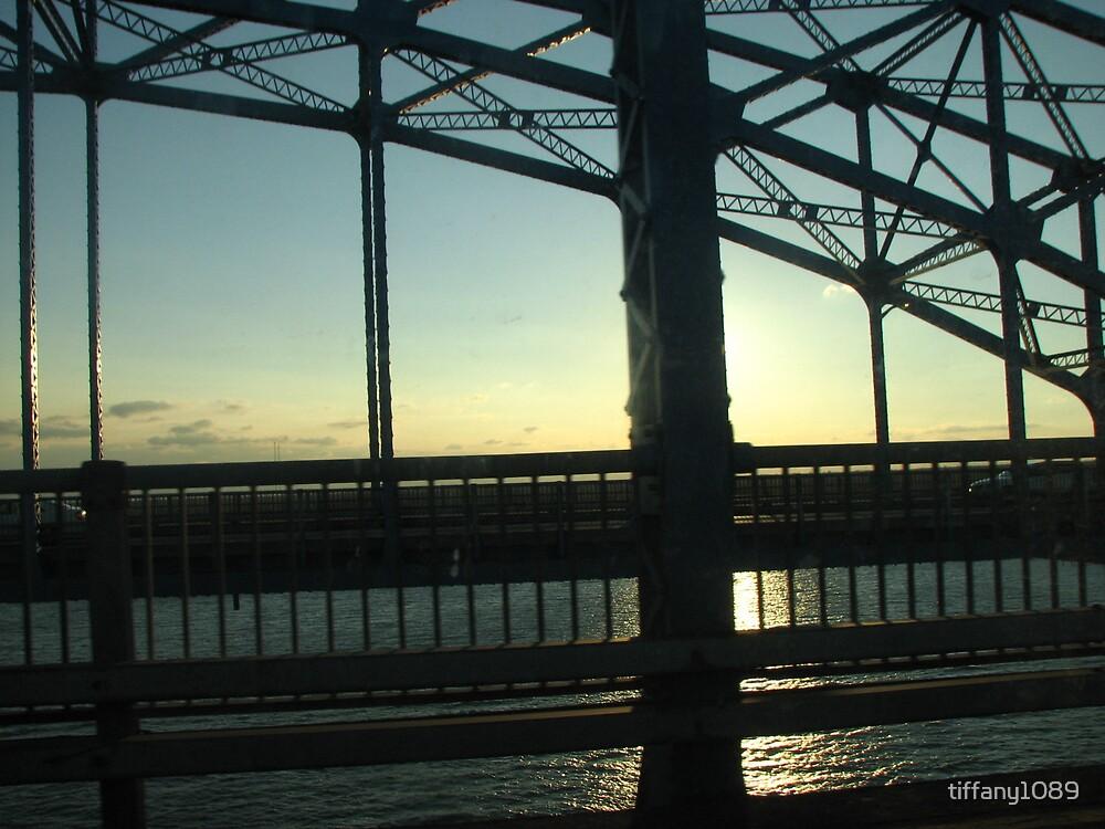 Bridge  by tiffany1089
