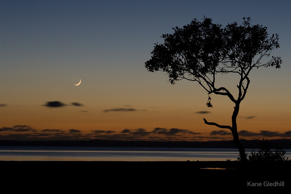 A walk on the moon is like a walk on the beach by Kane Gledhill