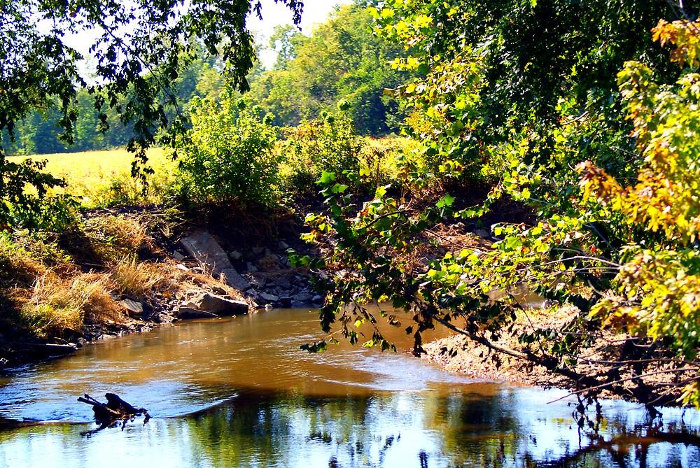 creek by kpic16
