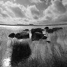 lochan by NordicBlackbird