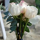Roses by Catherine Crimmins