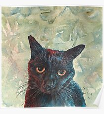 Pooky the Black Cat Poster