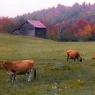 Autumn Pastoral - Greenwood,  Maine by T.J. Martin