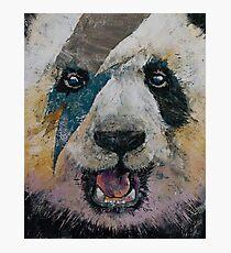 Panda Rock Photographic Print