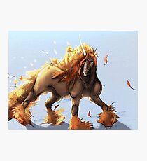 Fall Unicorn  Photographic Print