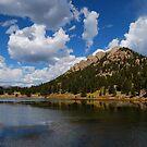 Lily Lake by Pamela Hubbard
