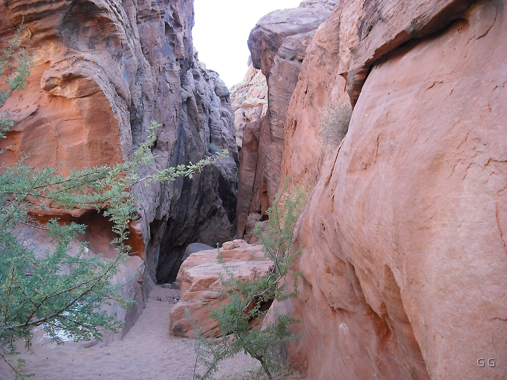 Valley of Fire by G G