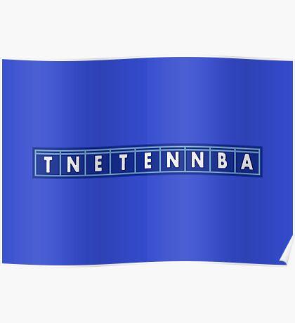 TNETENNBA - The IT Crowd Poster
