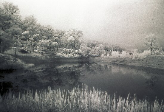 Genevieve's Lake by Juilee  Pryor